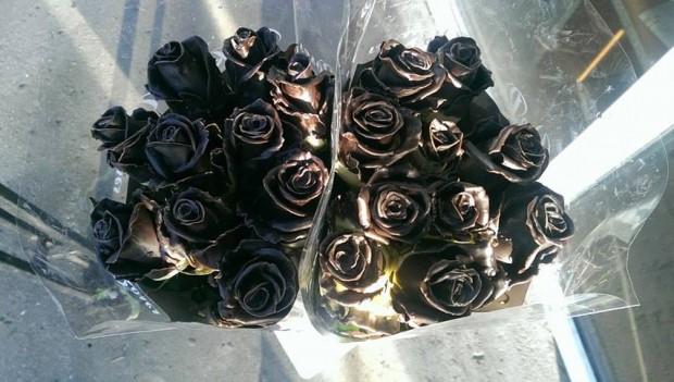 trandafir ciocolata1