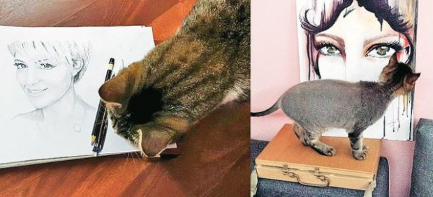 În casa Simonei, şi pisicile sunt pasionate de artă... Are 3 pufoşenii despre care spune că se bucură sincer când ea se întoarce seara acasă