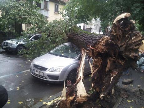 copac roma