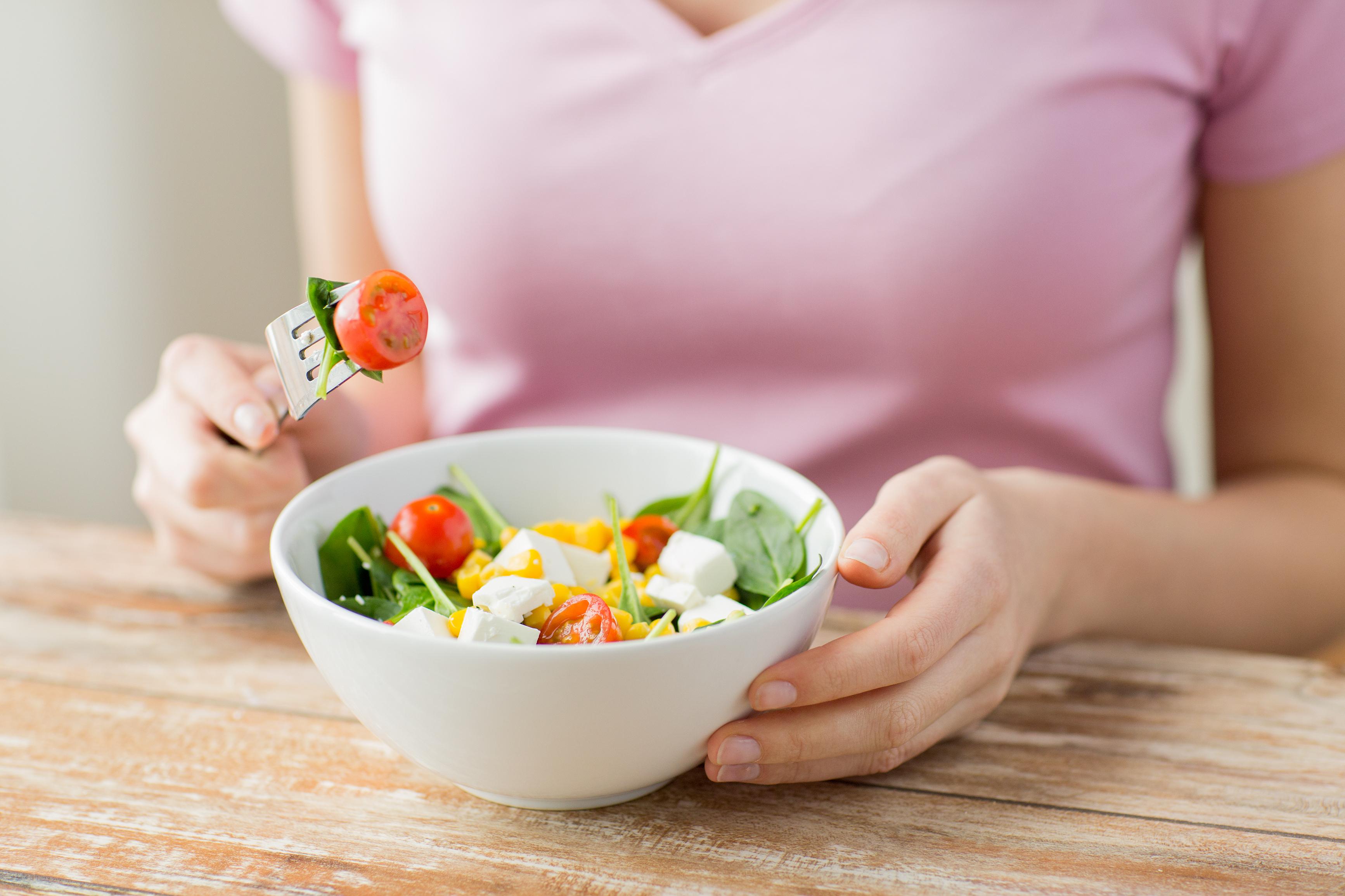dieta lacto vegetariana de slabit)