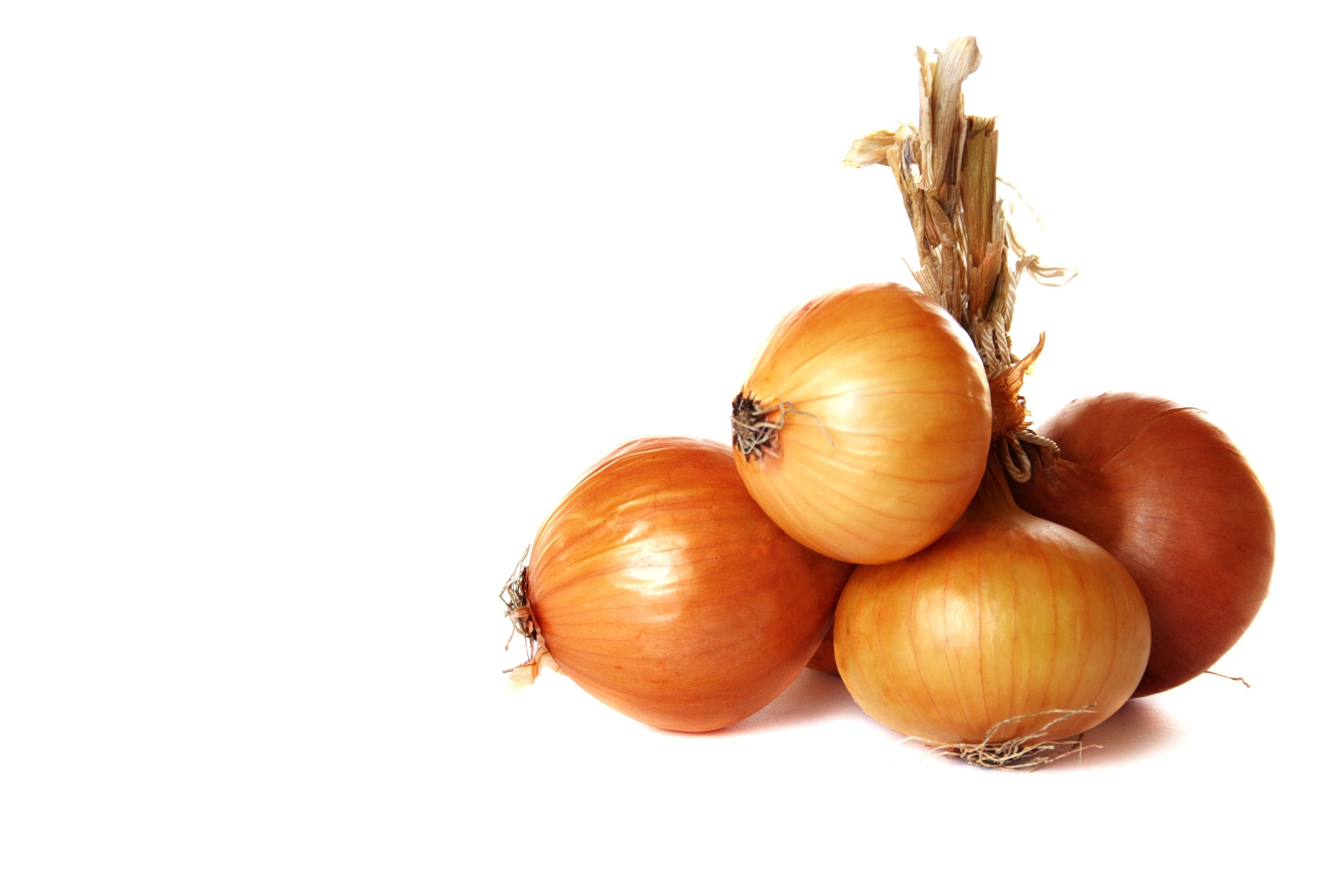 10394087 - bunch of onions on a white background.