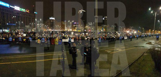 proteste_ample