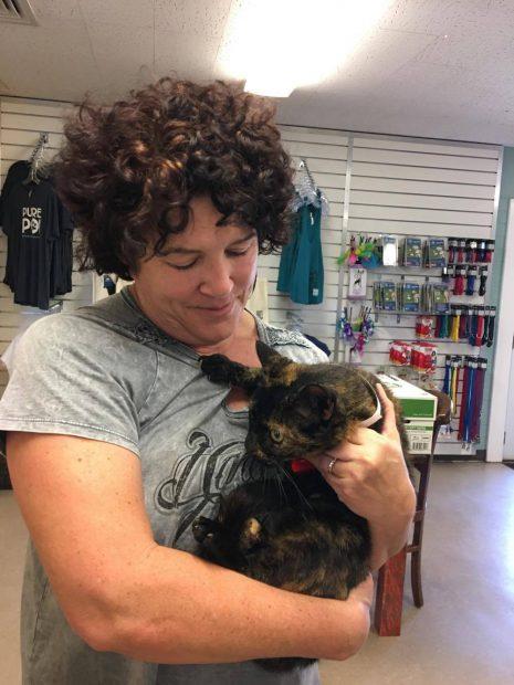 O femeie și-a găsit pisica pierdută în urmă cu 15 ani