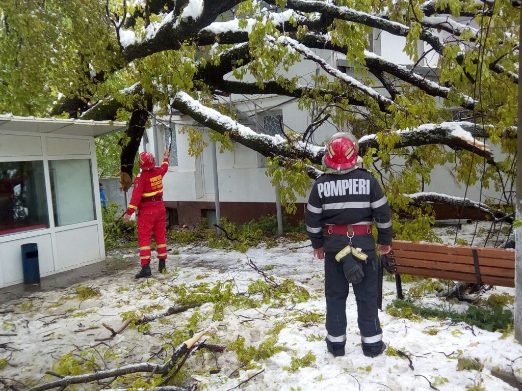 copac prabusit la spitalul voila din Campina (5)