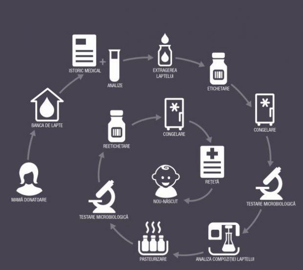 Cum va funcționa banca de lapte