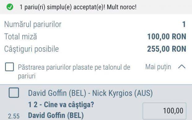Cota zilei din tenis - David Goffin vs Nick Kyrgios