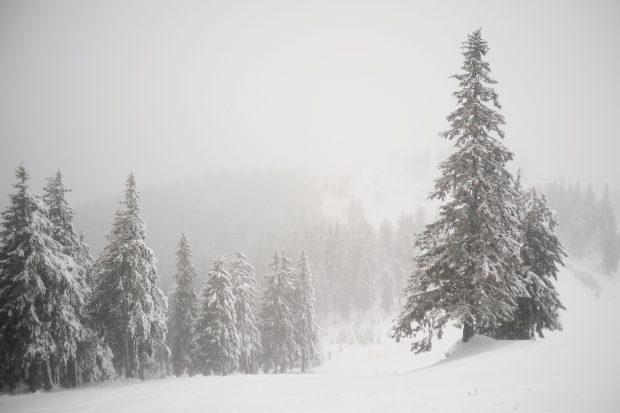 FOTO/ Pârtiile din Poiana Brașov și de pe Valea Prahovei, pregătite de 1 Decembrie
