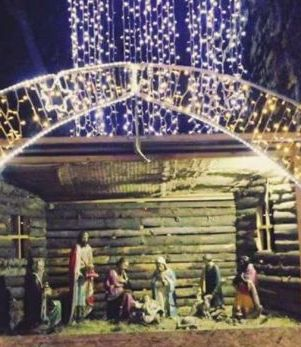 O văcuță din Moreni a mâncat din decorul de Crăciun amenajat în centrul orașului