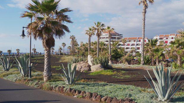 cât costă o vacanță. cât costă o vacanță âîn Tenerife