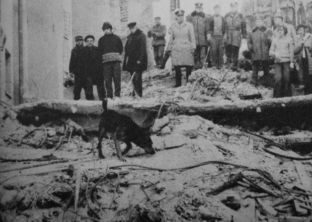 cutremur martie 1977, cautare raniti