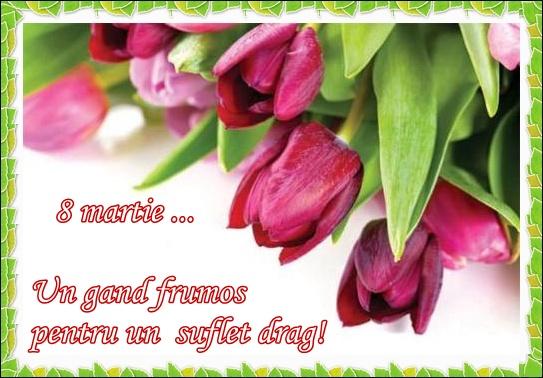 Felicitări de 8 martie-  lalelele înflorite