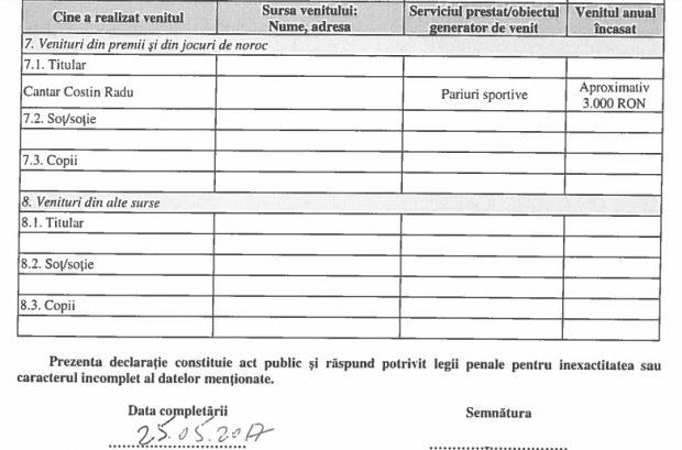 Declarație de avere Costin Radu Canţăr