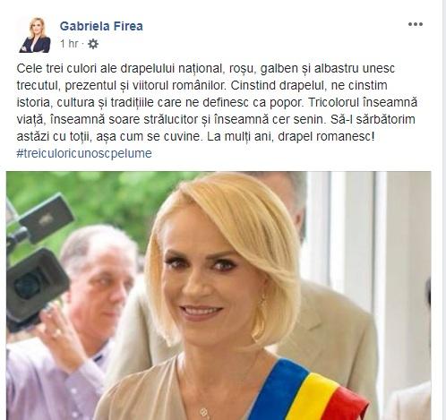 Gabriela Firea crede că tricolorul este compus din roșu, galben și albastru