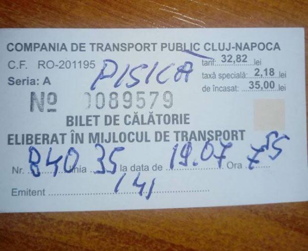 Amenda primită de femeia din Cluj-Napoca