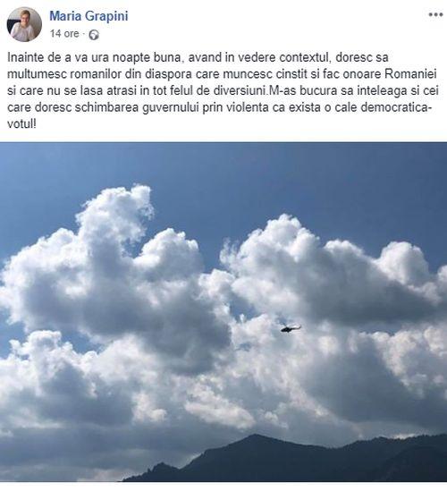 Mesajul Mariei Grapini pentru românii din diaspora după ștergerea celui jignitor (foto Facebook)