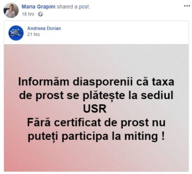 Mesaj preluat de Maria Grapini pe pagina ei de Facebook (captură foto Facebook)