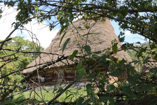 Arta construirii acoperişurilor din paie, pe cale să dispară