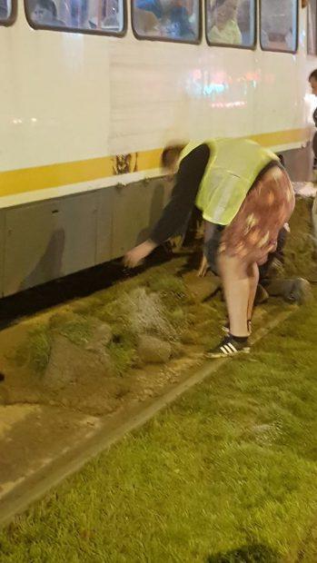 Tramvaiele au stat blocate aproximativ 20 de minute, până când toate bucăţile de gazon au fost scoase de sub tramvai