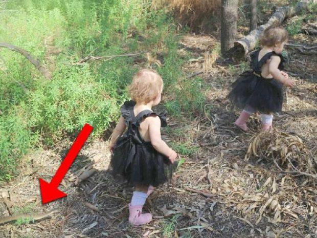 Imaginea cu șarpele apropiindu-se de fete surprinsă chiar de mama micuțelor
