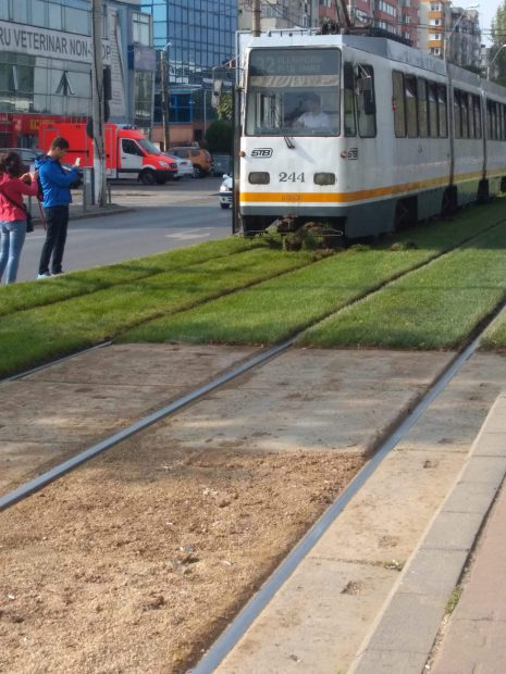 """Primăria Sectorului 5 are o explicație halucinantă pentru gazonul pus între șinele de tramvai: """"Ajută la calmarea psihicului uman!"""""""