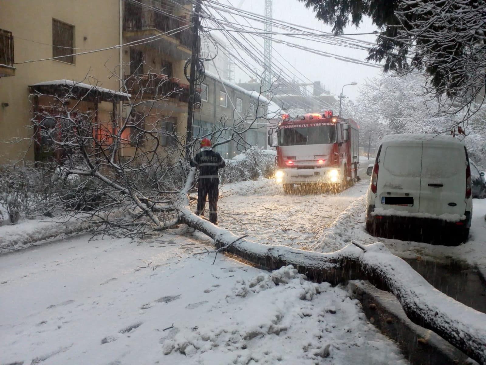"""""""Iadul alb"""" a ajuns în Timiș. Peste 10.000 de oameni fără curent, 60 de situații de urgență, haos pe străzi și tramvaie blocate la Timișoara"""