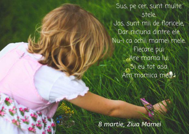Mesaje de 8 martie- Copil care culege flori