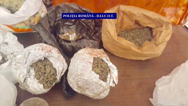 Droguri confiscate în Gorj