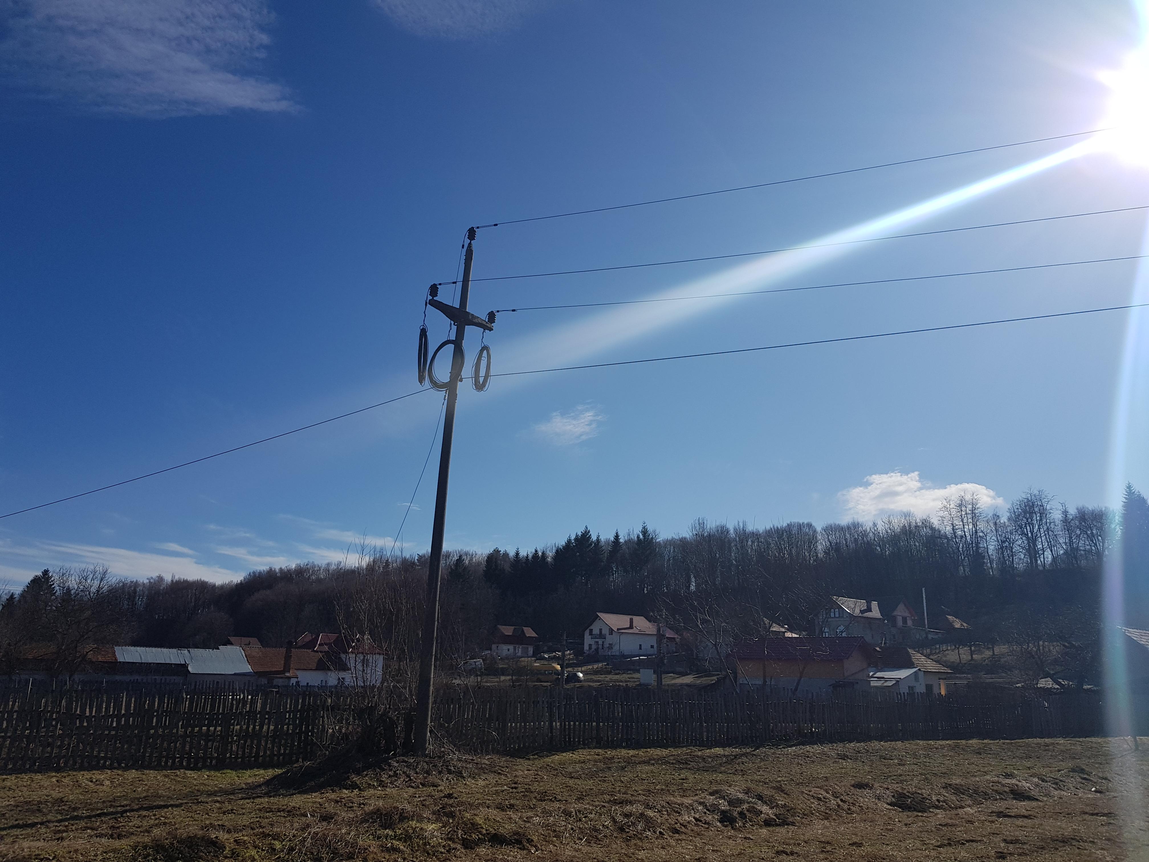 VIDEO / O femeie de 50 de ani a murit electrocutată în cireș! Compania CEZ Oltenia susține că nu are nici o vină, deși patru cabluri treceau prin coroana pomului și au fost dezafectate abia după tragedie!