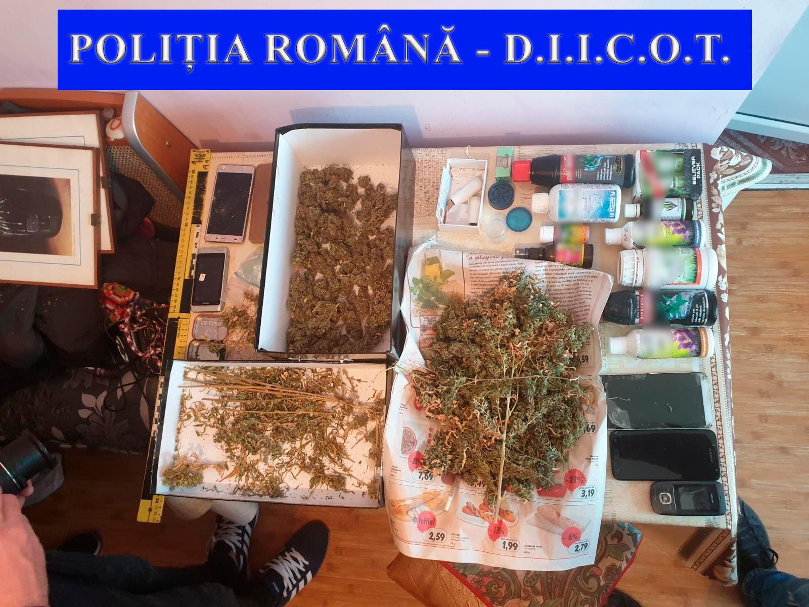 FOTO&VIDEO/ Imagini de la perchezițiile la rețeaua de traficanți de droguri în care e implicat și fiul cel mare al lui Andrei Pleșu