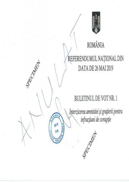 Peste 40% prezență la vot, la referendumul pentru justiție. Pentru ca referendumul să fie validat, 25% din voturi trebuie să fie valabil exprimate