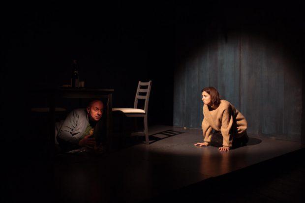"""Actorii Dana Rogoz și Marian Râlea, în """"Proof"""". Foto Adi Bulboacă"""