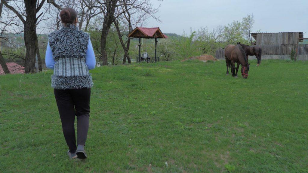 Lângă crucea lui Claudiu din curtea școlii pasc caii