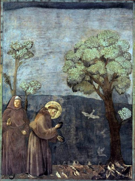 Sfântul Francisc de Assis, reprezentat în fresca pictorului italian Giotto