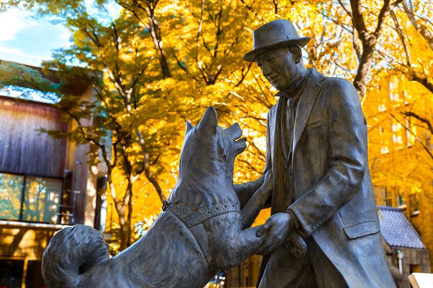 Statuia câinelui Hachiko și a profesorului său Ueno Hidesaburo, Japonia