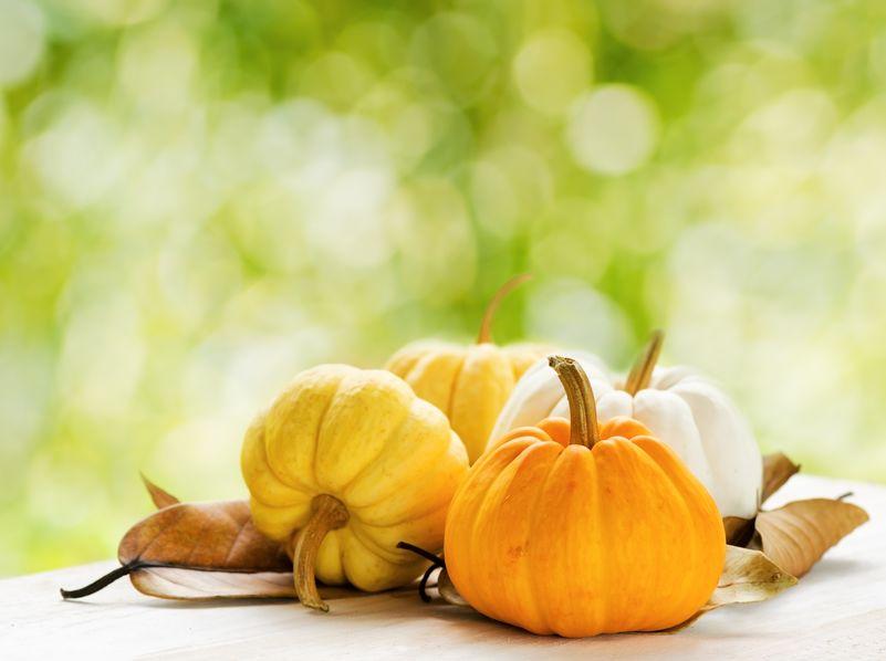 Dovleci de Halloween - dovleci ornamentali frumoși