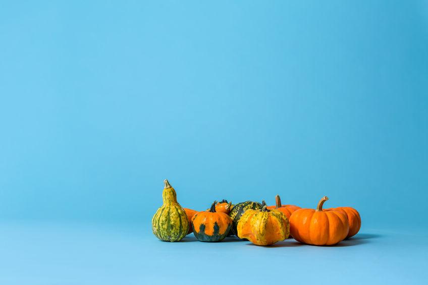 Dovleci de Halloween ornamentali