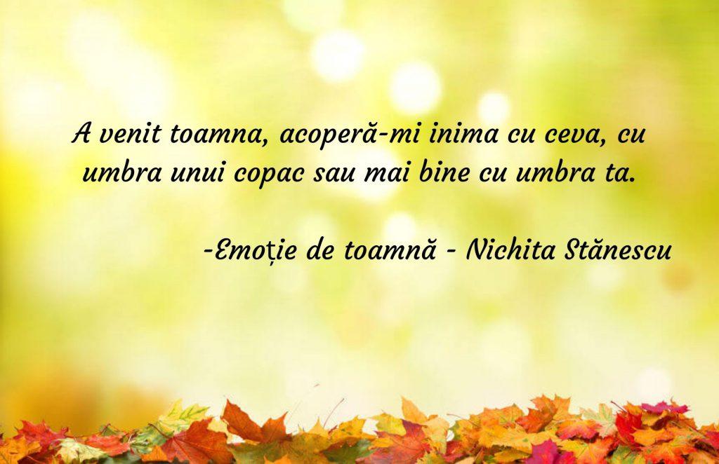 Emoție de toamnă - Nichita Stănescu - poezie de toamnă