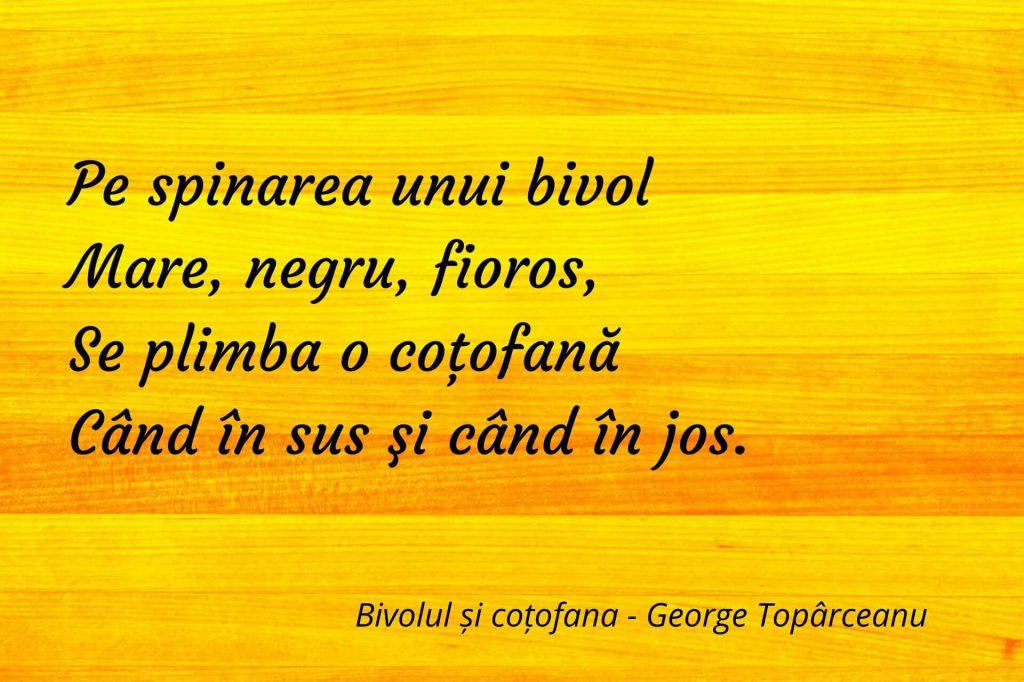Bivolul și coțofana - George Topârceanu