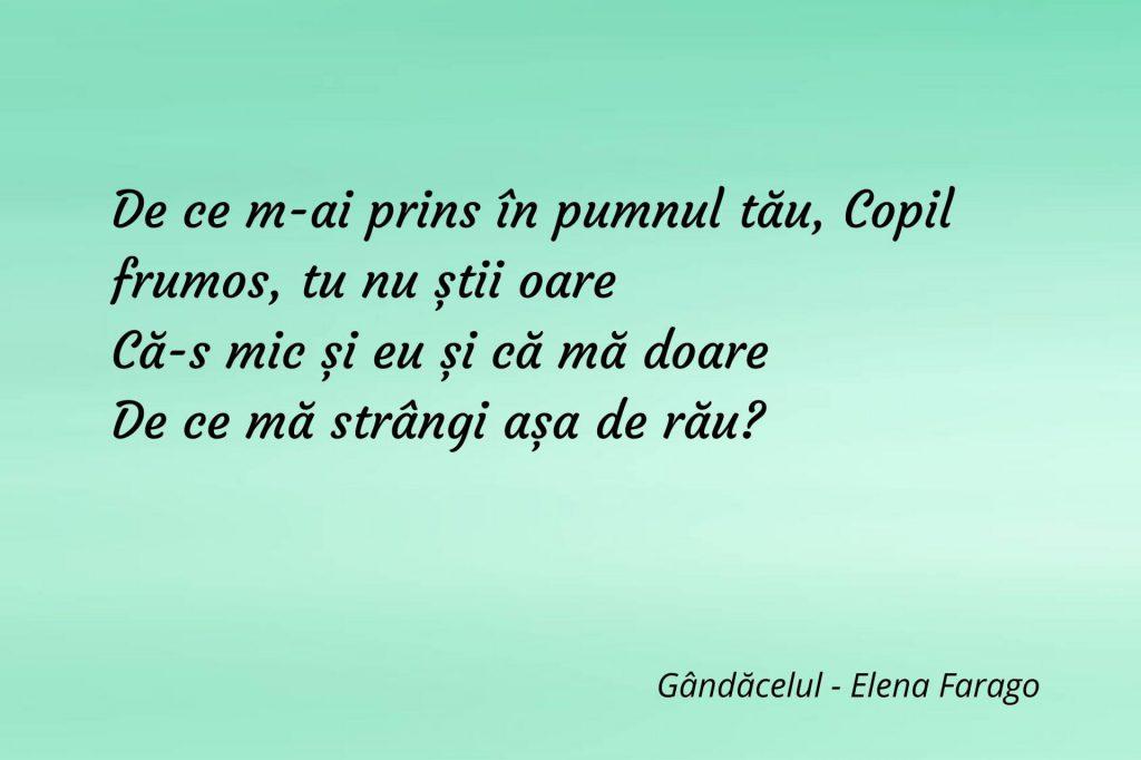 Gândăcelul - Elena Farago