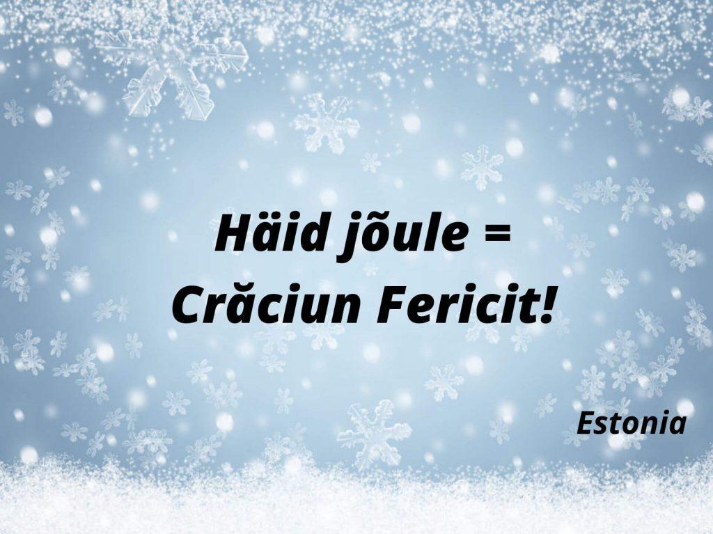 Häid jõule = Crăciun Fericit!