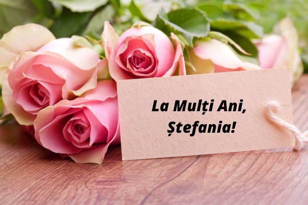 Mesaje pentru Ștefania