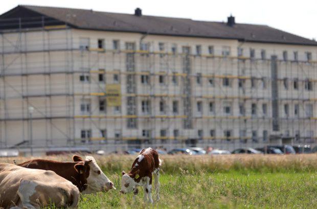 Casa cu mucegai a angajaților Tönnies. Reportaj Deutsche Welle despre condițiile mizere în care trăiesc muncitorii abatorului german, mulți dintre ei români
