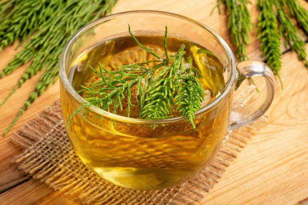 Ceai de coada calului – beneficiile uimitoare ale ceaiului din bota calului
