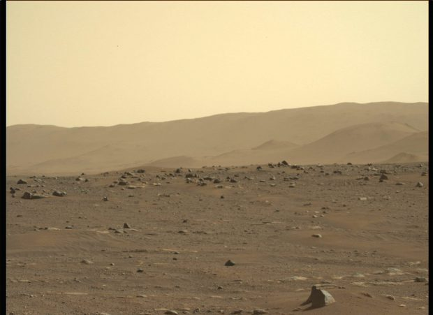 Mucegaiul negru ar putea supraviețui pe Marte. Cum ar putea ajuta acest lucru explorarea spațială