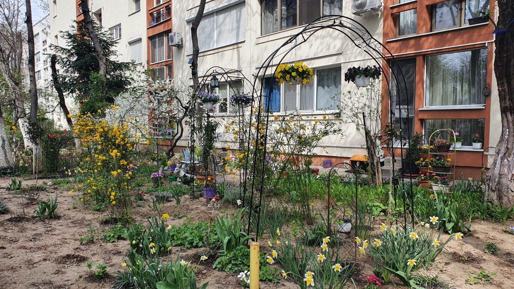 Un bucureștean a fost reclamat de zeci de ori pentru că are grijă de grădina blocului. Cine poate amenaja spațiul din fața scării