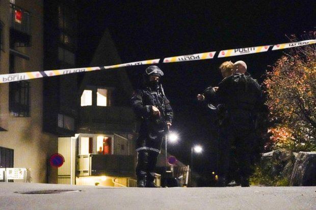 Cel puțin 4 morți și mai mulți răniți, după un atac comis de un bărbat cu un arc și săgeți, în Norvegia
